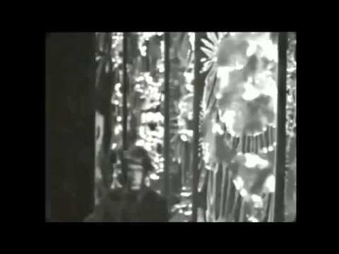 Jacques Dutronc   J'aime les filles 1967   YouTube