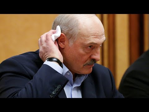 Лукашенко распорядился снизить риски возгорания лесов