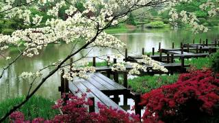 3 HOURS Zen Garden Relaxing Music Sleep Music For Spa Meditation Therapy