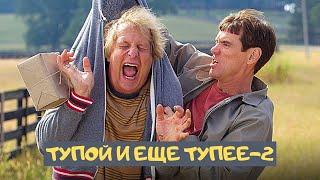 КУЛЬТОВАЯ КОМЕДИЯ С ДЖИМОМ КЕРРИ! Тупой и ещё тупее 2. Лучшие фильмы. Filmegator