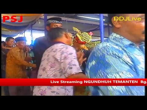Live Streaming CIPTO LARAS NGUNDHUH TEMANTEN  Bg. Riswanto Dwi N.C & Tessa Loviani Ardianti