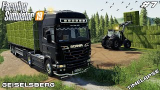 Baling hay & collecting bales | Animals on Geiselsberg | Farming Simulator 19 | Episode 7