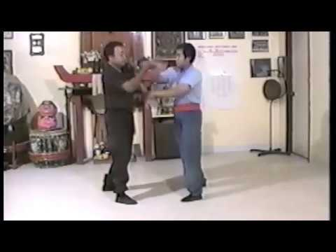 MASTER FONG WING CHUN CHI SAU WITH DOM GILLIAM TUC...