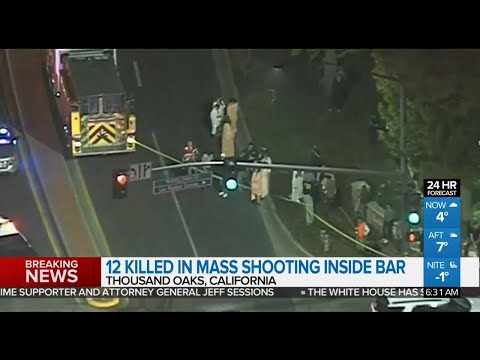 12 killed in California bar shooting, including a police officer