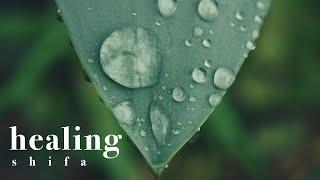 Ayat Shifa - The Healing Verses - ايات الشفاء