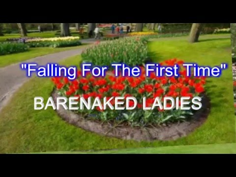 Falling For The First Time - Barenaked Ladies ( lyrics )