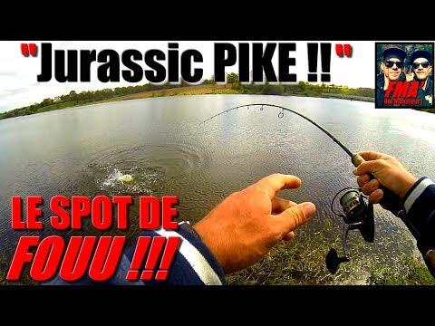 JURASSIC PIKE !! Bon pêcheur ou Bon Spot ?! Haha