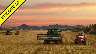 12 Hours of Harvesting Rice!