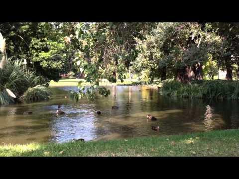 Carlton Gardens Melbourne Australia