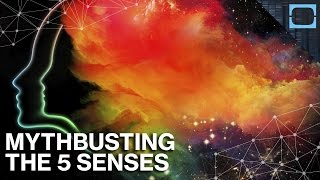 "Busting The Myth Of ""The 5 Human Senses"""