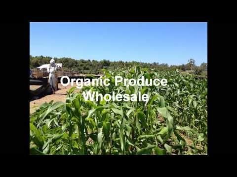 Organic Produce Wholesale 877-565-3239