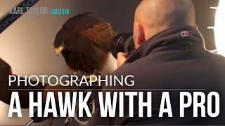 Karl Taylor Hawk Photo Shoot