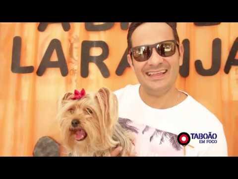 Abril Laranja discute políticas públicas para proteção dos animais