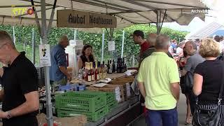Viele Aktionen zum siebten Weinkulturtag