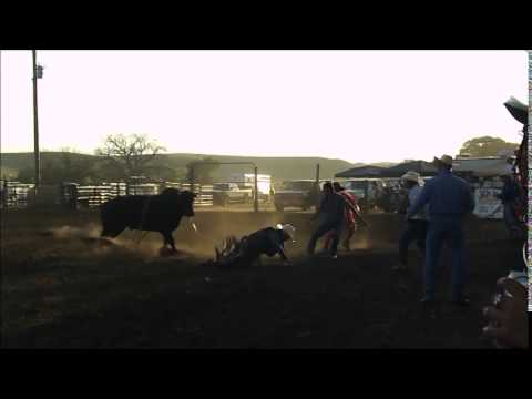 bullriding in Fort yates,ND 2ND bull