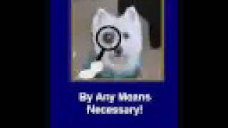 Westie Club Video