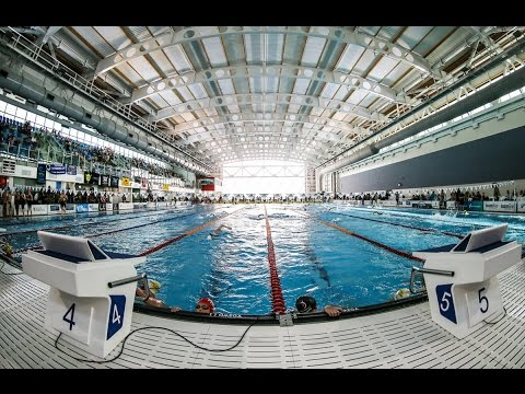 2017 New Zealand Open Championships - Session Five