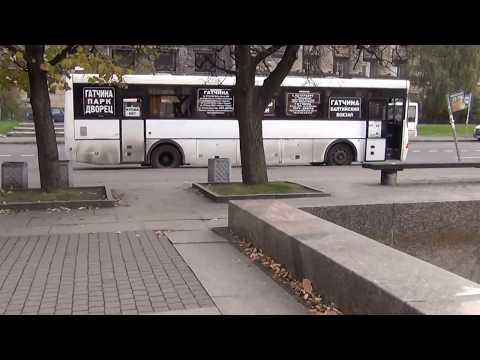 СПб, Как дойти от метро Московская до автобусов на Павловск, Пушкин, Гатчину.