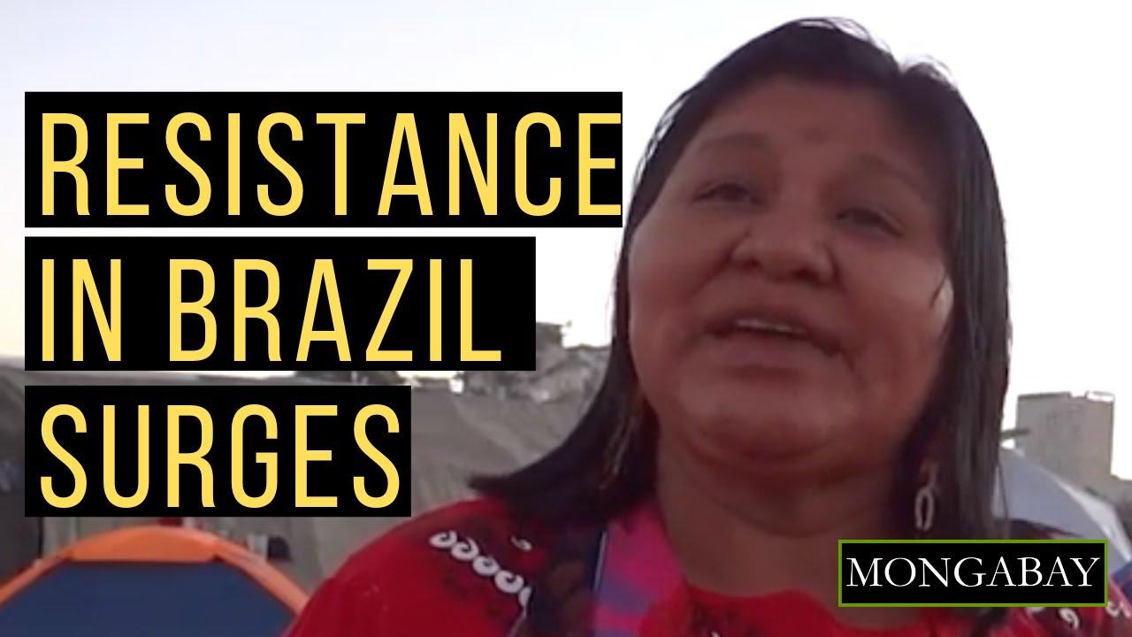 Resisting to exist:' Indigenous women unite against Brazil's far