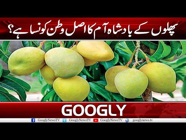 Phalon Kai Badshah Aam Ka Asal Watan Kaun Sa Hai? | Googly News TV