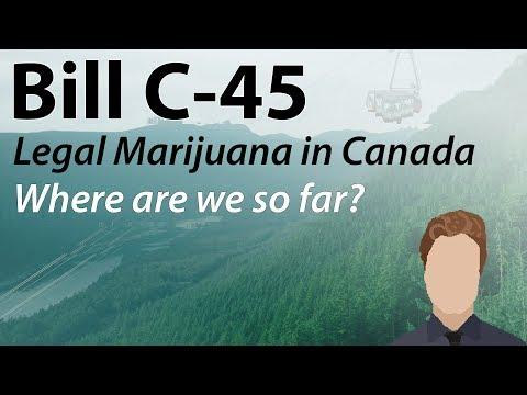 Marijuana Legalization in Canada: Where are we so far? | Bill C-45