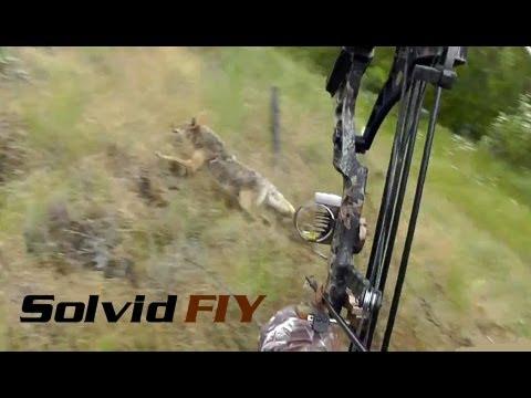 Insane Double Archery Coyote Hunting POV Head Cam – Solvid FIY