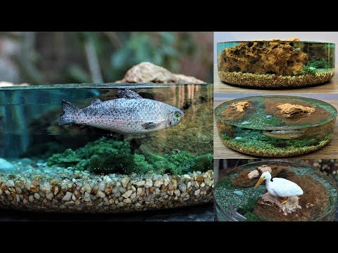 How to Make a Miniature Fish Pond Diorama | Resin Art