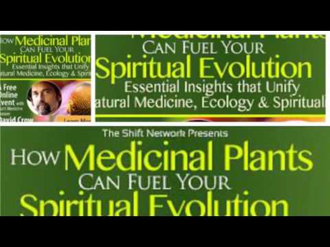 Medicinal Plants and Spiritual Evolution