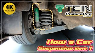4K  How a car suspension system works  TE N Endura Pro Plus for C V C