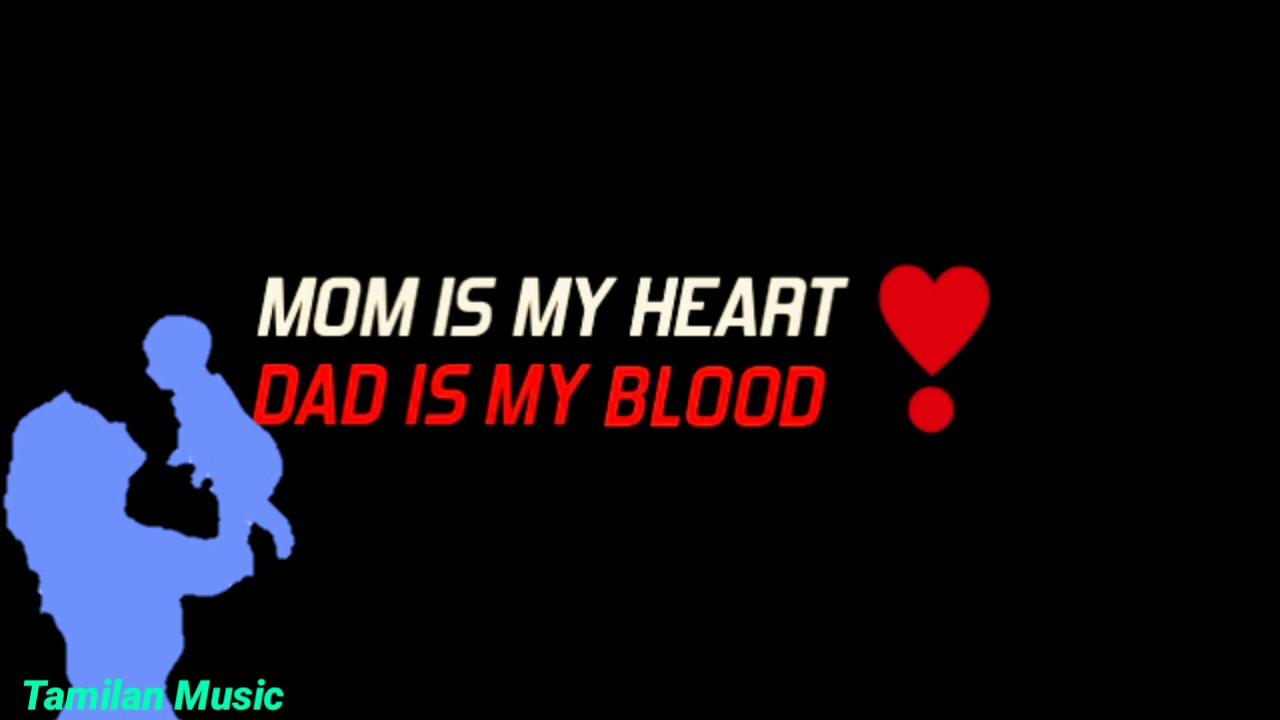 love my Amma | Appa 💞 | KGF lovely Whatsapp status video