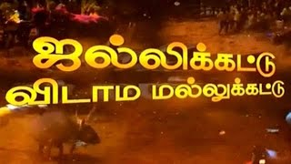 Jallikattu Vidama Mallukattu – History Of Jallikattu | Peppers TV Pongal Special Program