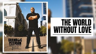 SHAMROC PETERSON (the Abstract Jedi) w/ Dj Mane One | THE WORLD WITHOUT LOVE (Lyrics & Video)