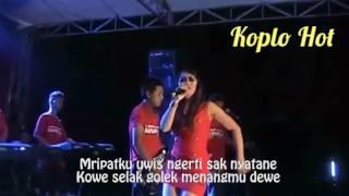 Dangdut Koplo Indonesia  - Suket Teki Full Lirik
