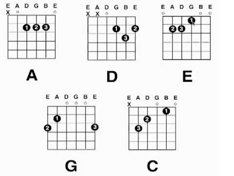 BCG-008: How To Read A Chord Diagram