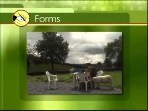 Read Write Now 4 Programme 1 Reading For Children Part 1