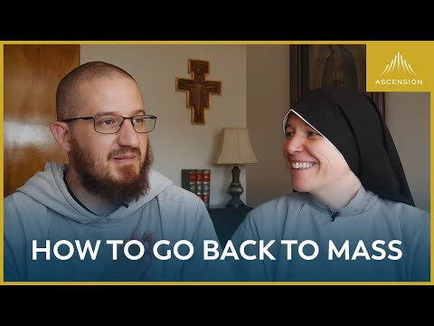 What We Learned from Life Without Mass