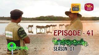 Sobadhara | Season - 01 | Episode 41 | Sobadhara Rupavahini Thumbnail