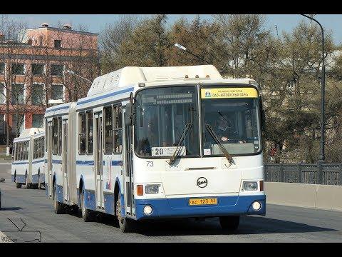 Новые волгоградские автобусы