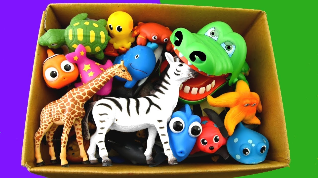 Learn Sea Animal and Wild Zoo Animals Names | Learn Colors and Toys For Kids