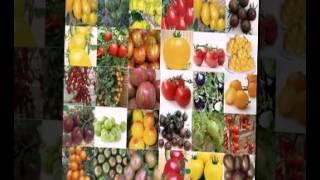 голландские семена овощей купить(, 2015-02-12T21:44:35.000Z)