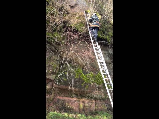 Sauvetage dun chien par les Pompiers de Dabo - Dog sauved by firemen