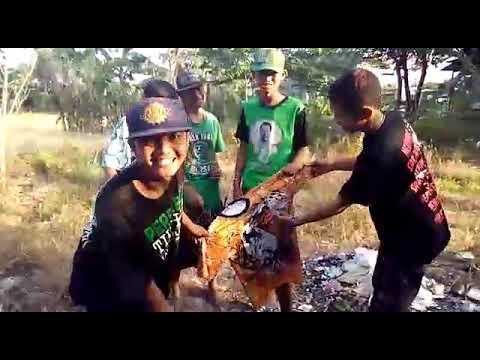 Balasan Bonek Kpda The Jak Anjing