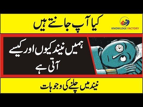 The Science Behind Sleep And How It Comes - Urdu/Hindi