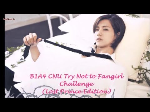 B1A4 CNU Try not to fangirl challenge (Lost Prince Edition)