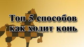 Уроки по шахматам. Топ 5 Способов объяснений. Как ходит конь?