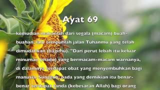 Surah An-Nahl (16) ayat 68 - 69