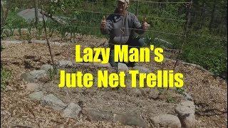 Trellis Basics Part 1: Lazy Man's Jute Net Trellis