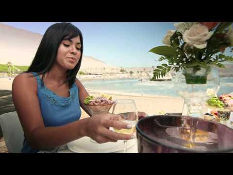Video Promocional Vive Arica, versión en Español