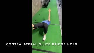 Contralateral Glute Bridge Hold