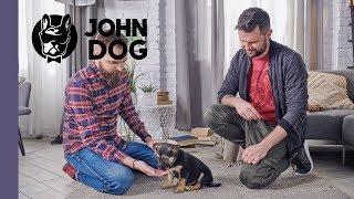 Jak zapoznawać szczeniaka z dorosłymi osobami? – TRENING – John Dog